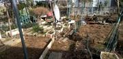 水戸市K様宅 庭の草刈り
