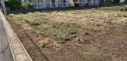 水戸市S様 畑の草刈り
