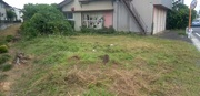 水戸市T様 建屋周りの草刈り